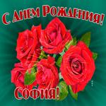 Картинка гиф с днем рождения София