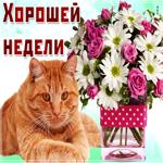 Картинка хорошей недели с котиком