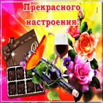 Картинка прекрасного настроения с цветами