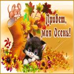 Картинка привет, моя осень