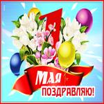 Картинка с 1 мая с цветами
