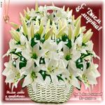 Картинка с 8 марта с лилиями
