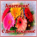 Картинка с днем рождения Анастасия с анимацией