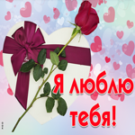 Картинка с подарком, я люблю тебя