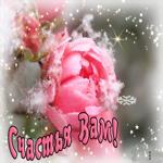 Картинка с цветами со снегом