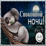 Картинка спокойной ночи с коалой