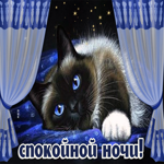 Картинка спокойной ночи с котом