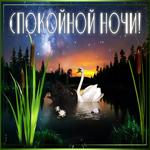 Картинка спокойной ночи с лебедями