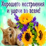 Хочу пожелать хорошего настроения и удачи во всем