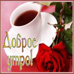 Хорошая открытка доброе утро с розой