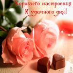 Хорошего настроения и удачного дня