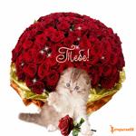 Кошка с букетом цветов