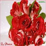 Красивые розы для тебя