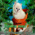 Красивая открытка про зиму