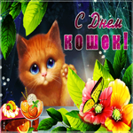 Красивая открытка день кошек