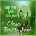 Красивая открытка день посадки леса
