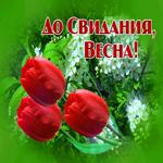Красивая открытка Последний день весны
