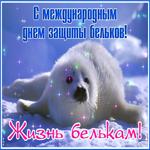 Красивая открытка с днем защиты бельков