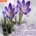 С Первым Днём Весны