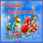 Красивая открытка с вербным воскресеньем
