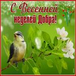 Красивая открытка с весенней неделей добра
