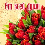 Красные тюльпаны от всей души