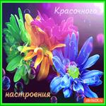 Красочного летнего настроения