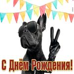 Креативная картинка на день рождения с собачкой