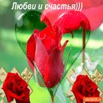 Любви и счастья желаю