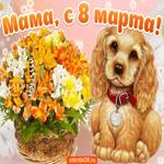 Мама, с восьмым марта тебя