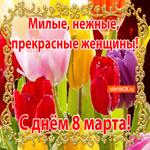 Милым Женщинам С 8 Марта