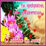 Мне хочется дарить вам цветы