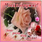 Моей подруге роза