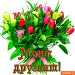 Моим друзьям букет тюльпан