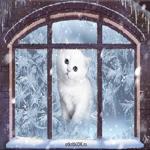 Зима зимушка