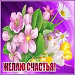 На счастья тебе эти цветы