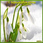 Наступил первый день весны