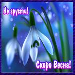 Не грусти, Скоро Весна