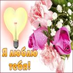 Нежная картинка люблю с розами