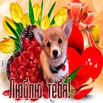 Очаровательная открытка люблю с собачкой