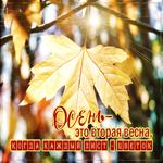 Оригинальная открытка с осенью