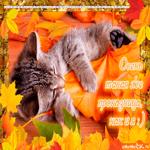 Осень проказница