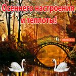 Открытка Осеннего настроения и теплоты