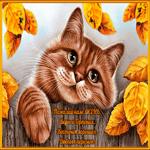 Осенней веры и терпения