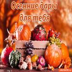 Осенние дары для тебя