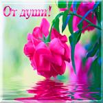 От души тебе цветочек