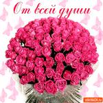 От всей души большой букетик роз