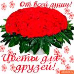 От всей души цветы для друзей