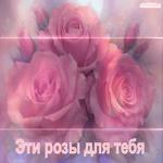 C розами тебе