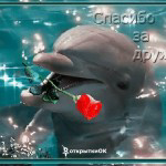 Позитивная открытка спасибо за дружбу